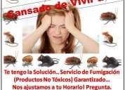 Servicio de fumigacion productos no toxicos