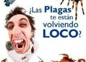 SERVICIOS DE DESTAPES DE CAÑERIAS PLOMERIA L.G. CONTACTARSE.