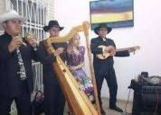 Arpa cuatro maracas musica llanera en vivo