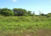 Vendo terreno de 12500m2
