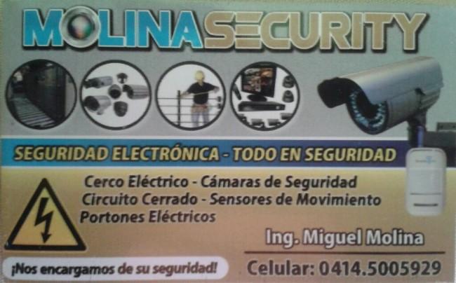 Seguridad Electrónica, Contactarse.