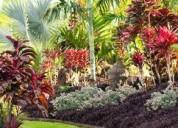 Paisajismo y jardineria