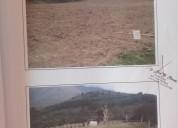 Oportunidad!. 2 hectareas en pueblo hondo la grita