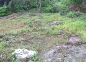 Excelente terreno en el junquito