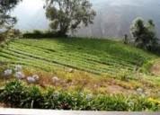 Excelente terreno de 5 hectarias en venta
