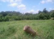 Terreno de 1500 mts oferta en valera