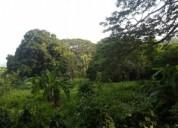 Vendo terreno en pitiguao 1 hectarea en puerto cabello