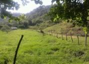 Amplio terreno en falcón