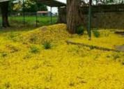 Terreno de 1 hectarea con construccion en la entrada de san jaime en maturín