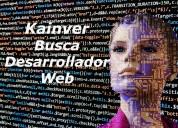 Desarrollador web php / hmtl / css