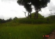 Terreno en venta en los montes verdes los teques 16437 m2