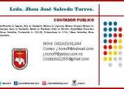 Contador publico independiente.