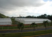 Invernadero de 800 m2