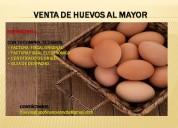 Venta de huevos al mayor