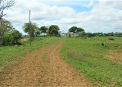 Sky group vende terreno agropecuario en falcón