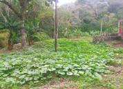 *oferta negociable* finca 85 hectáreas