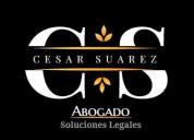 Profesional abogado te ofrece soluciÓn legal